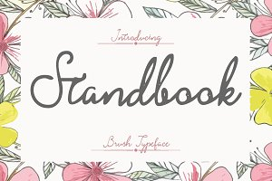 Stand Book Brush Typeface