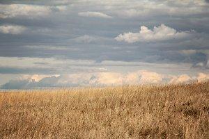 stormy prairie landscape