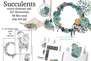 Succulent Elements & Illustrations
