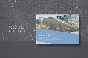 Business Landscape Brochure
