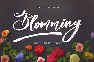 Blomming TYPEFACE %50 OFF!