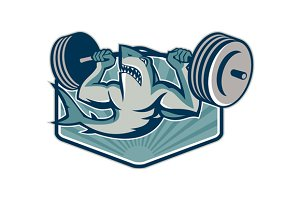 Shark Weightlifter Lifting Weight