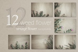 weed flowers background