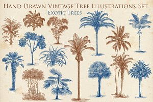 Hand Drawn Vintage Exotic Tree Set