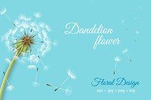 Dandelion flower vector set