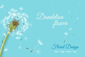 Dandelion flower vector set