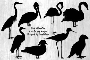 Bird Silhouette Illustrations