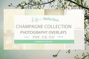 Champagne Overlay Collection Bundle