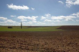 Rural landscape in Soria