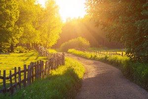 Rural Sweden landscape