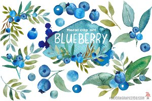 Blueberry watercolor clip art