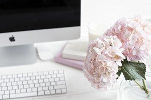 Pink Floral Styled Stock Desktop
