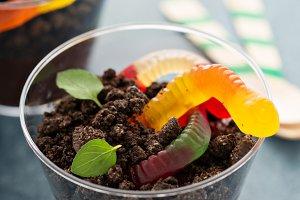 Children chocolate dessert in a cup dirt and worms
