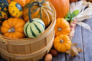 Variety of colorful decorative pumpkins in a basket