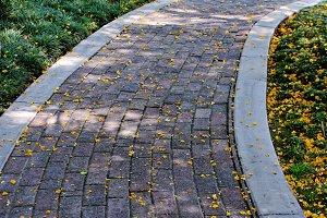 Winding Walkway
