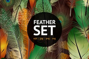 Colorful feather vector set