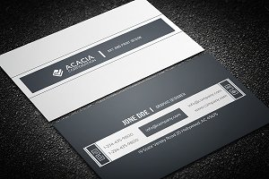 Sleek and Simple Business Card