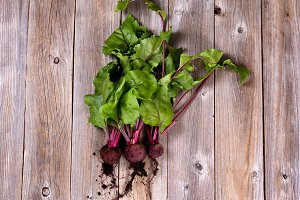 Healthy Beets from Garden