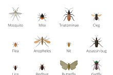 Insect parasites vector set