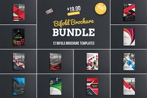 Bifold Brochure Bundle