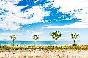 Beautiful landscape, Greece