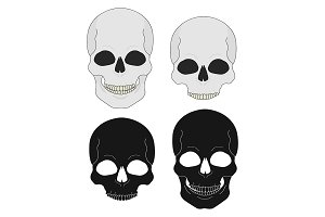 Black and white skull. Vector
