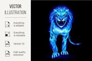 Blue fire lion