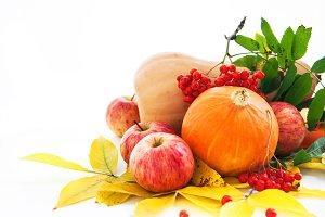 Autumnal fruits and veggies
