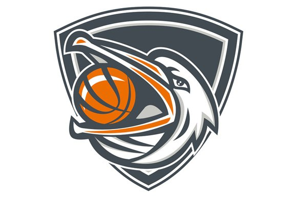 Pelican Basketball In Mouth Shield  in Illustrations