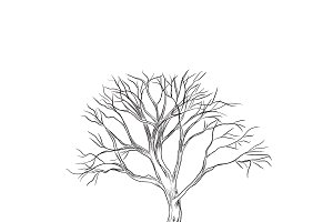 tree in sketch style, vector