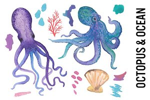Octopus Watercolor Clipart