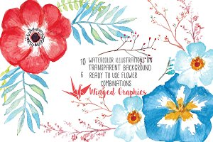 Red and Blue watercolor flowers