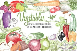 watercolor vegetable illustrations