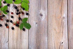 Organic Blackberries on rustic wood