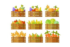 Boxes With Fruits and Vegetables