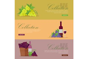 Fliers for Elite Wine Collections