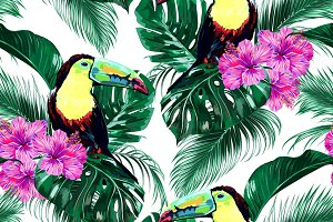 Toucans,tropical leaves pattern