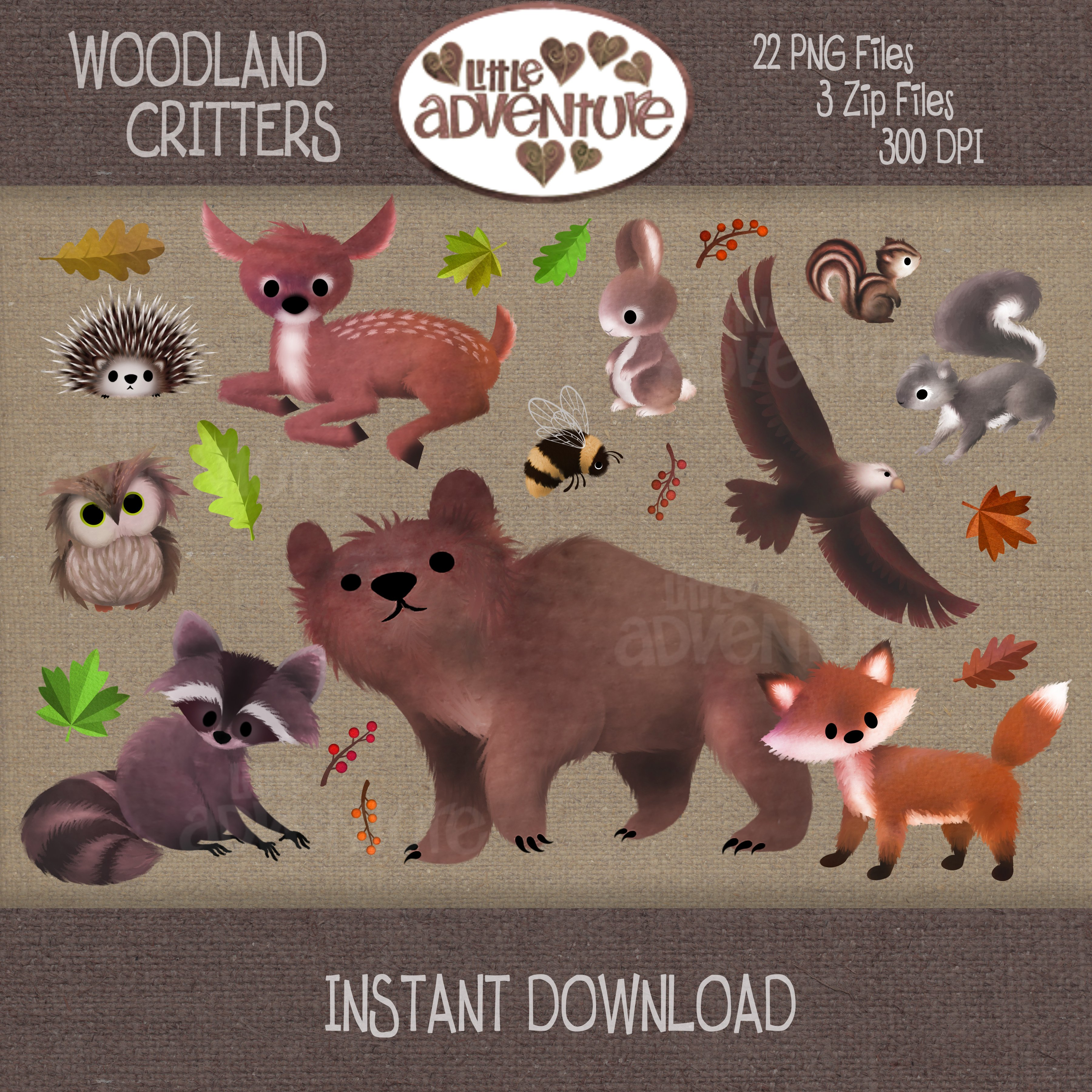 Woodland Critters - Digital Clipart ~ Graphics on Creative Market