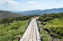 Wooden bridge in the mountain