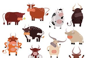 Cartoon cow action set vector