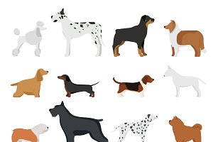 Dog breed vector