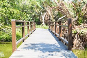 Bridge wooden walkway.