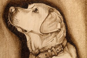 Labrador Pyrography Pattern