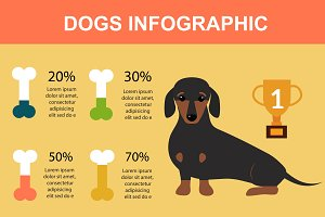 Dog playing infographic vector