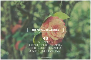 THE FLORAL COLLECTION iseeyouphoto