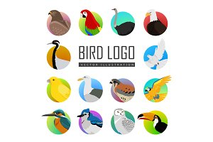 Set of Bird Logo Vector Illustration