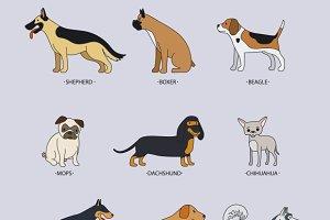 Doodle dog breeds vector set
