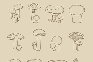 Vector hand drawing mushrooms