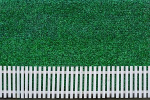 Fence and green leaf