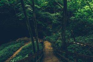 Green Caves Nature Landscape